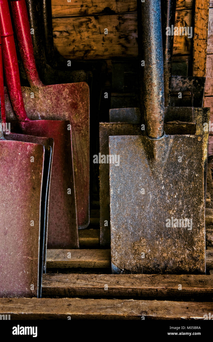 Archaeologist's tools Stock Photo