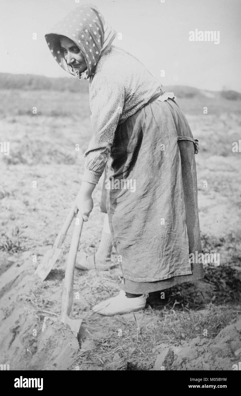 Woman with shovel in Belgian Field - Stock Image