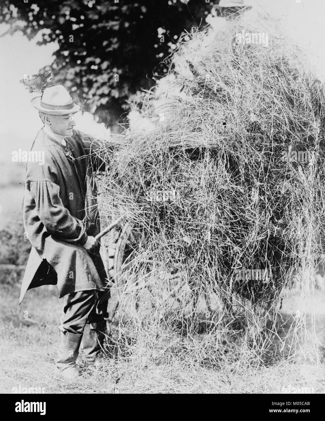 President Coolidge Loading Hay - Stock Image