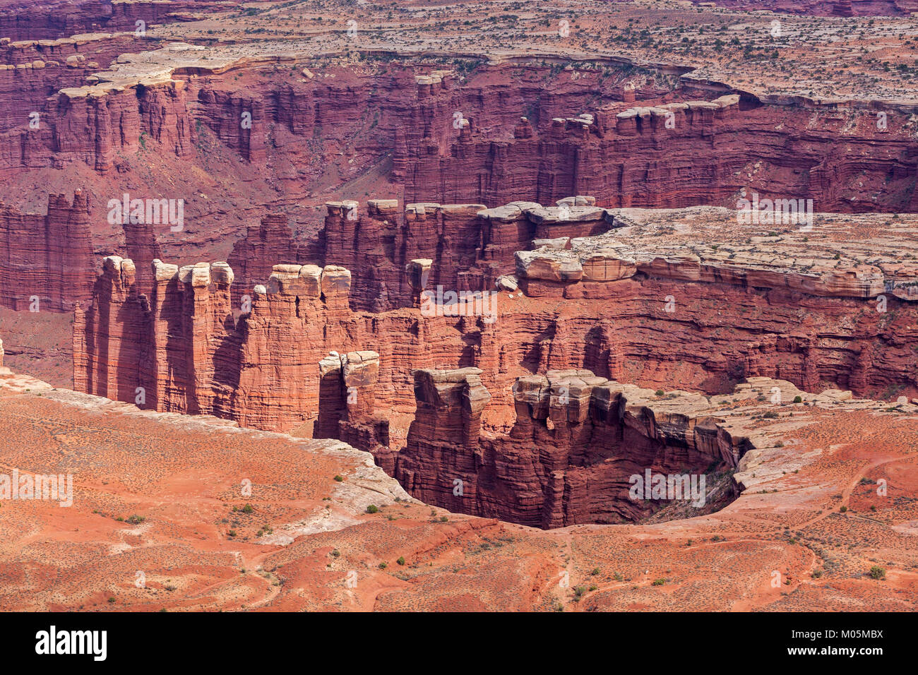 A view of the Grand View Point Overlook in the Canyonlands National Park in Utah. - Stock Image