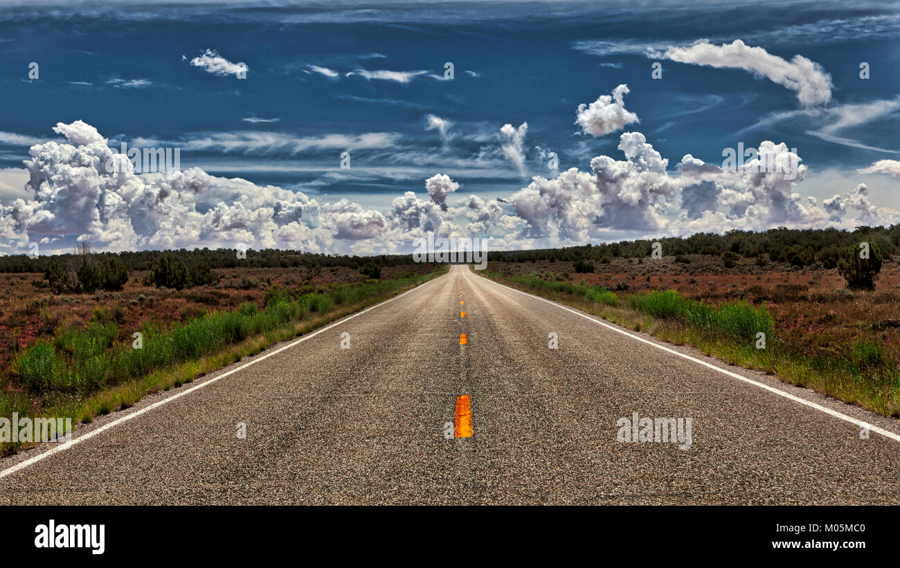 An empty, lonely road that stretches to the Horizon with shrubs and bushes on both sides and a cloud formation against - Stock Image