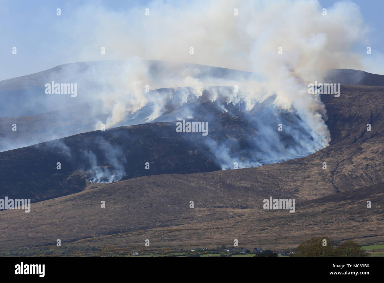 large mountainside fire raging and being helped by the wind, county kerry, ireland - Stock Image