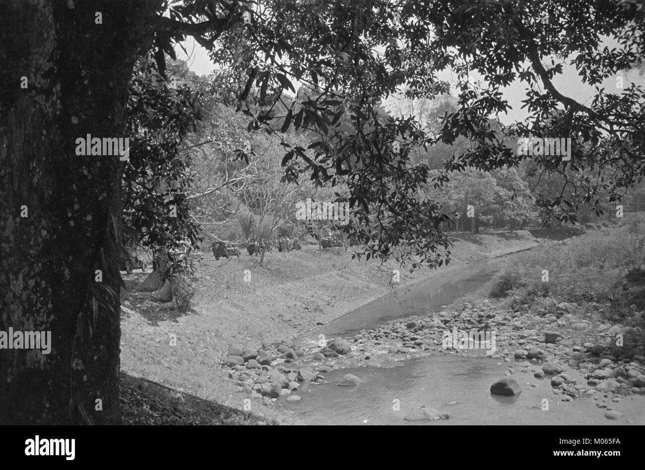 Buitenzorg De over geheel de wereld beroemde 's Lands Plantentuin te Buitenzorg, Bestanddeelnr 7053 - Stock Image