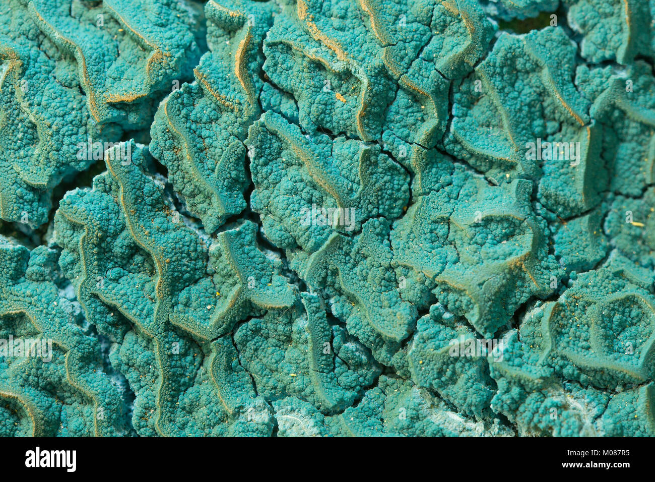 mineral surface Stock Photo