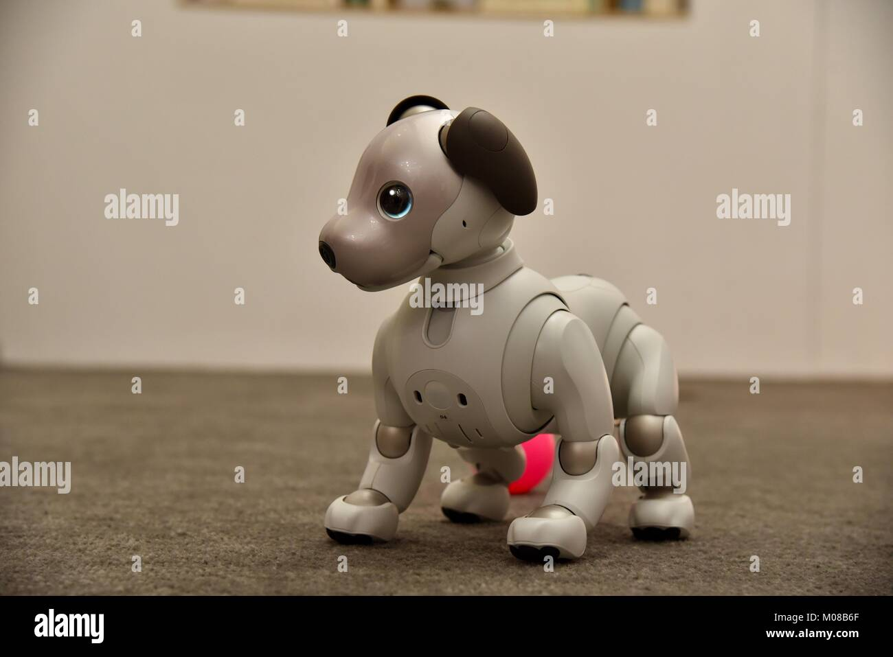 Sony's new, cute, adorable and expensive Aibo robot dog