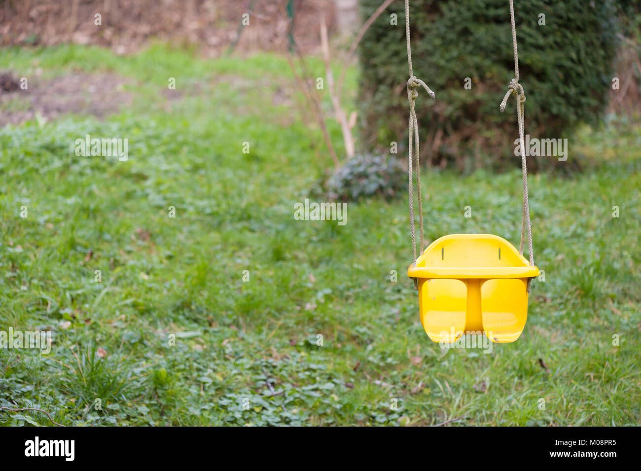 Yellow baby swing hanging on a tree - Stock Image