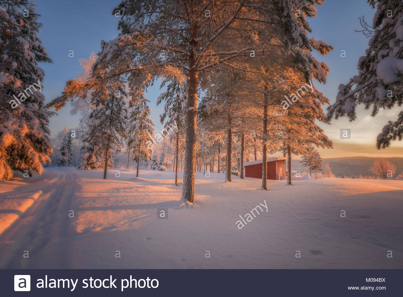 barrack in a winter forest landscape - Stock Image