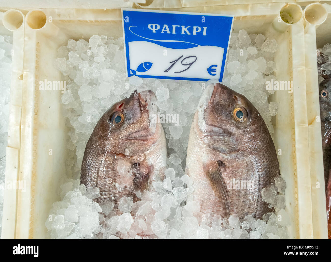 Fishmonger in the streets of Rethimnon, sea bream ΦΑΓΚΡΙ, fish on ice, Rethymno, Europe, Crete, Greece, Rethymno, Stock Photo