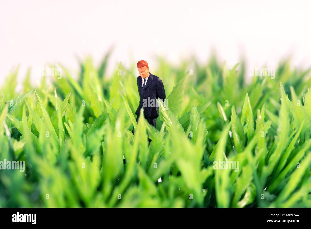 Miniature figure of a businessman standing in green grass thinking looking for inspiration and ideas - Stock Image