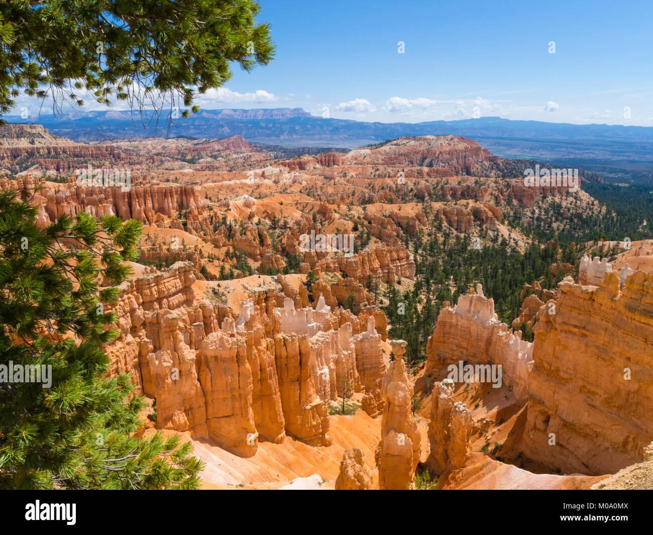 Hoodoo rock formations at Bryce Canyon National Park, Utah (USA). - Stock Image