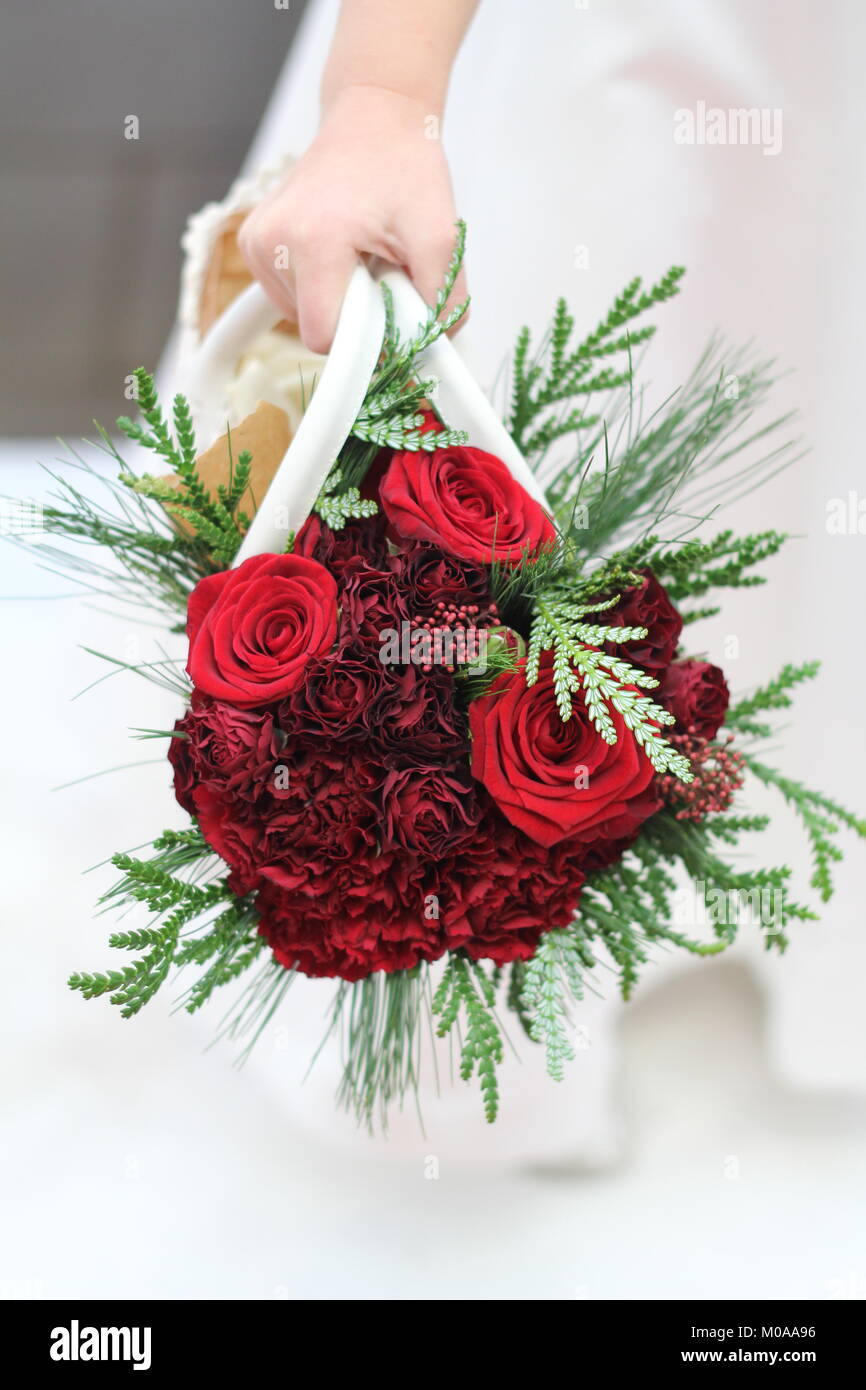 Flower Carnations Stock Photos & Flower Carnations Stock Images - Alamy
