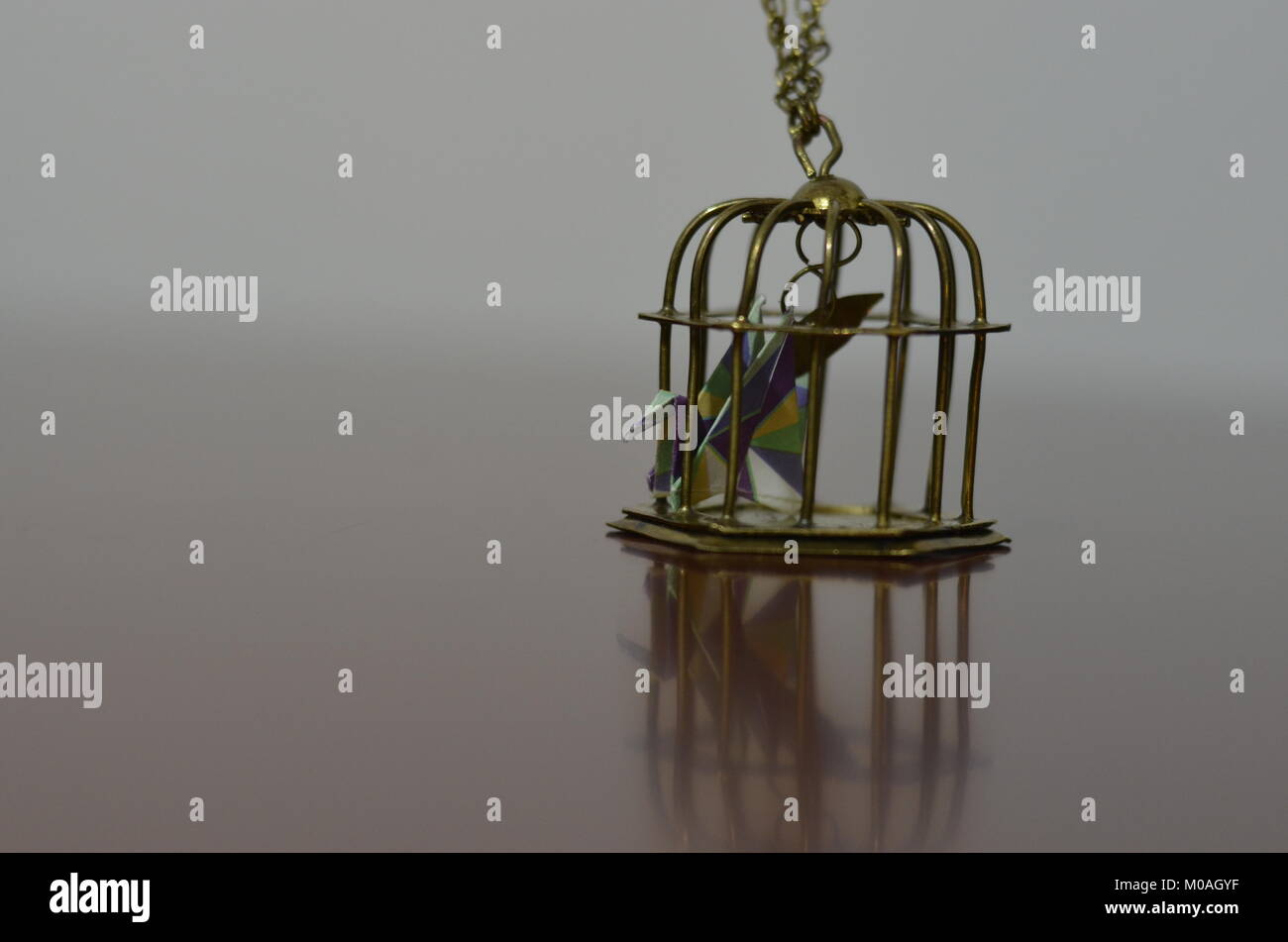 Locked In Cage Stock Photos & Locked In Cage Stock Images - Alamy