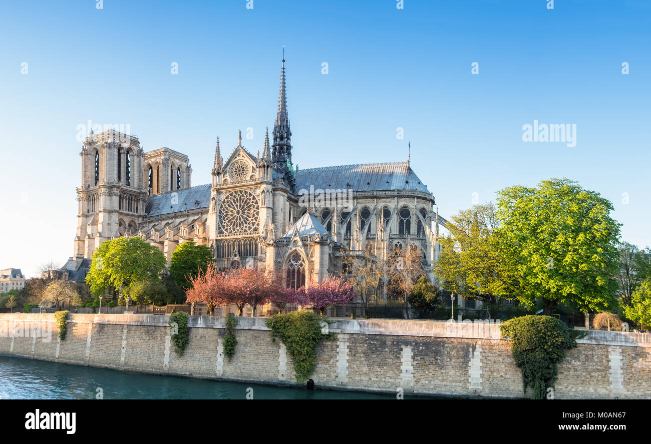 Notre Dame Cathedral in Paris on a bright afternoon in Spring, panorama image - Stock Image