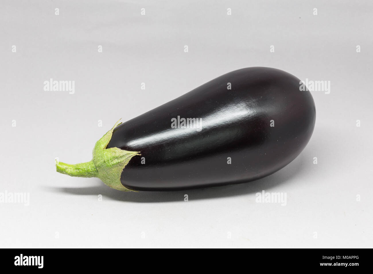 Eggplant black beauty type studio picture - Stock Image