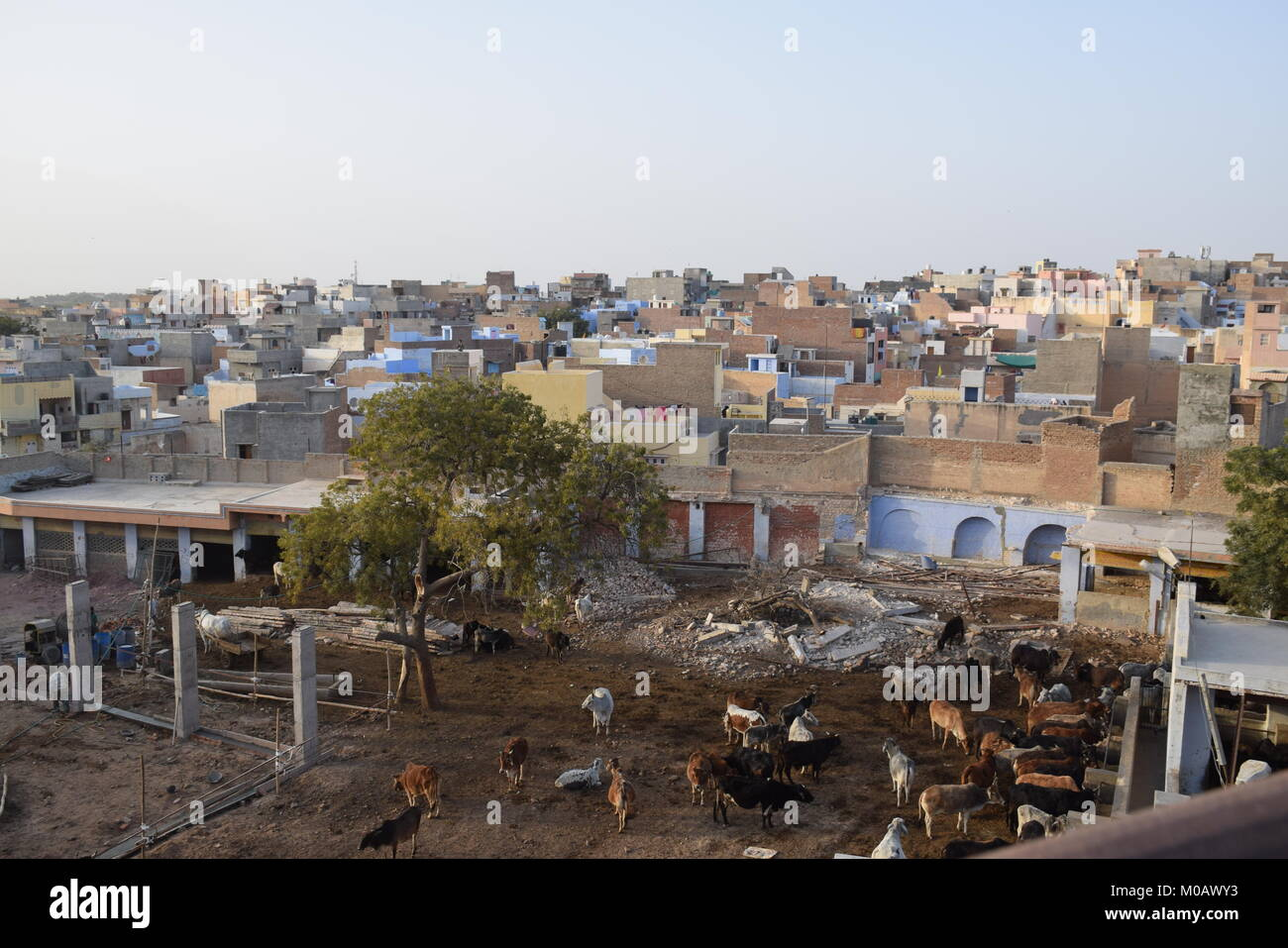 Overall view of the city of Bikaner in Rajasthan, India - Stock Image