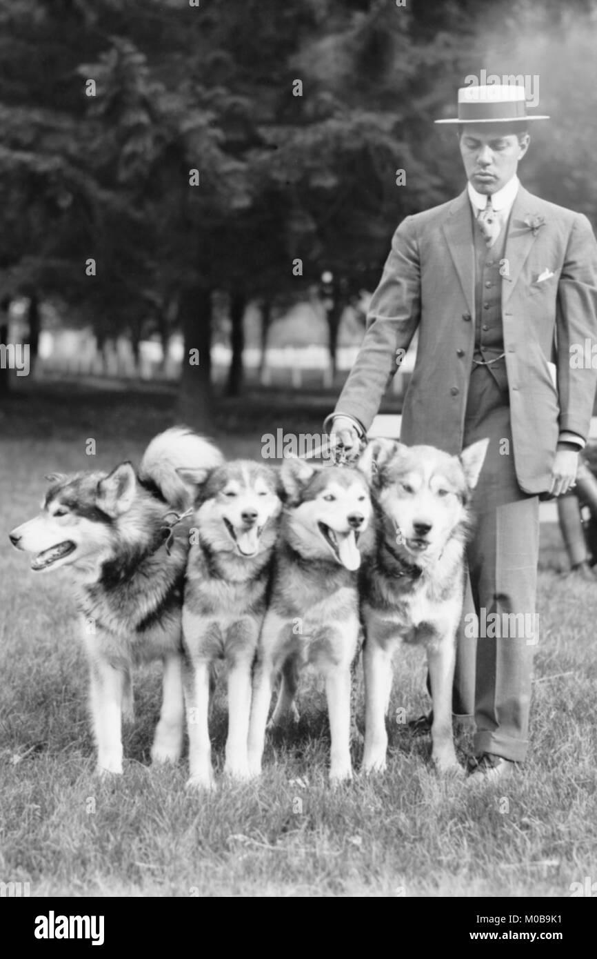 Four Eskimo Dogs at the Mineola Dog Show - Stock Image