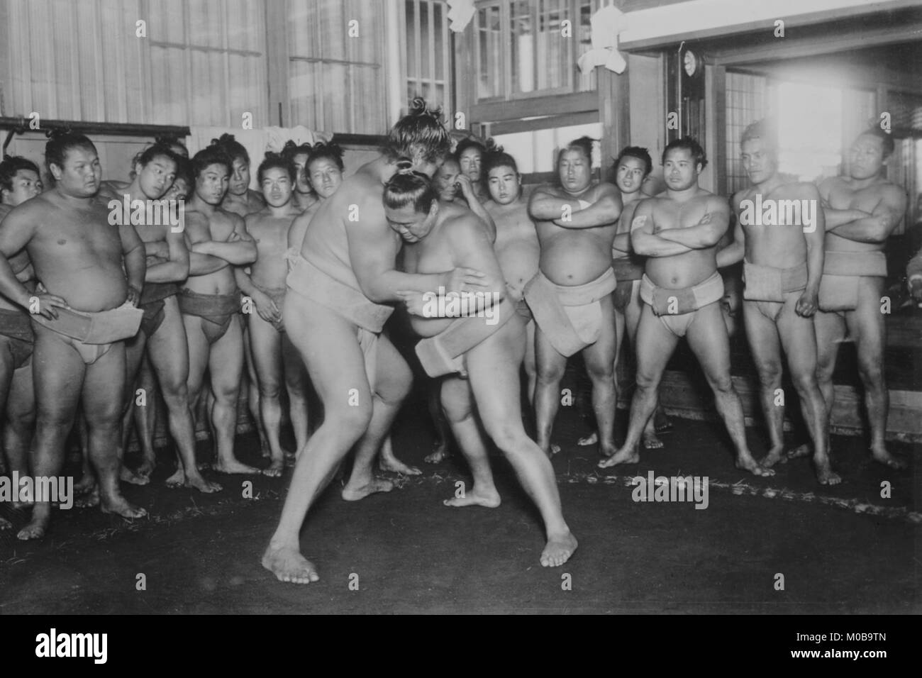 Sumo Wrestlers - Stock Image