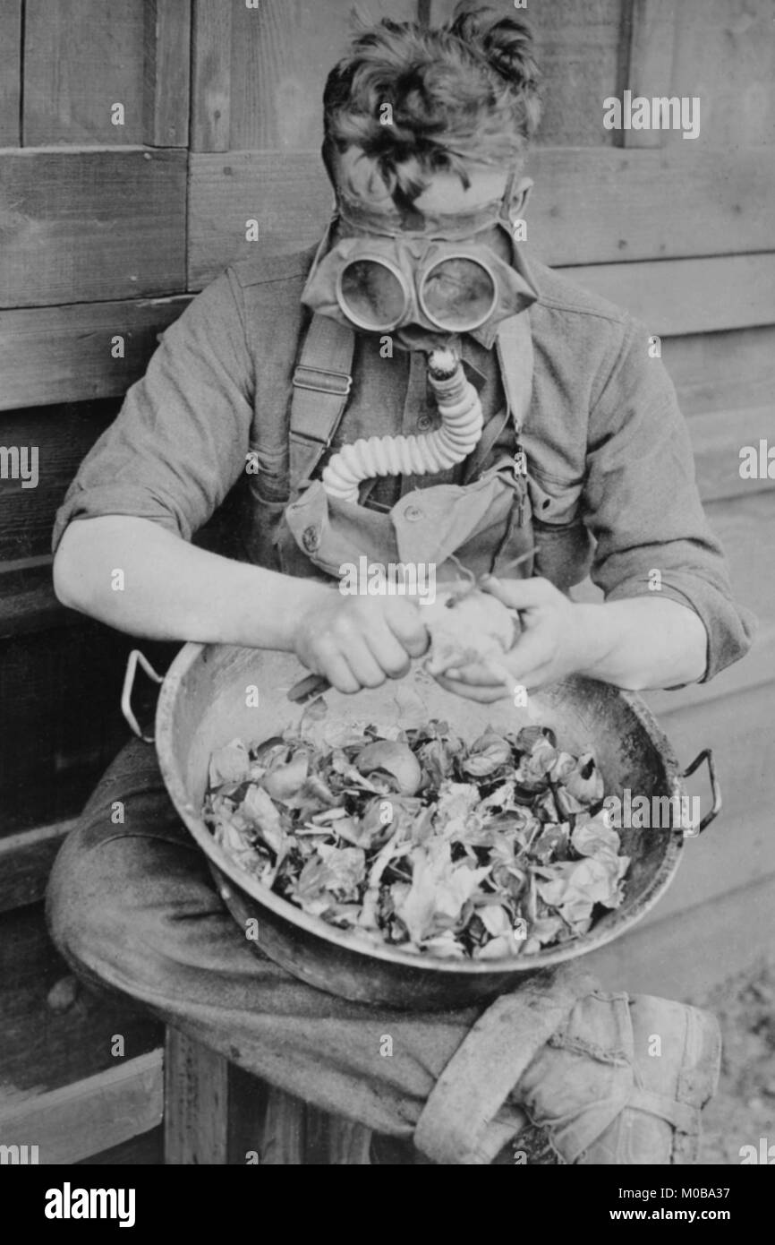Soldier dons Gas Mask to Protect himself from Crying over Onions - Stock Image