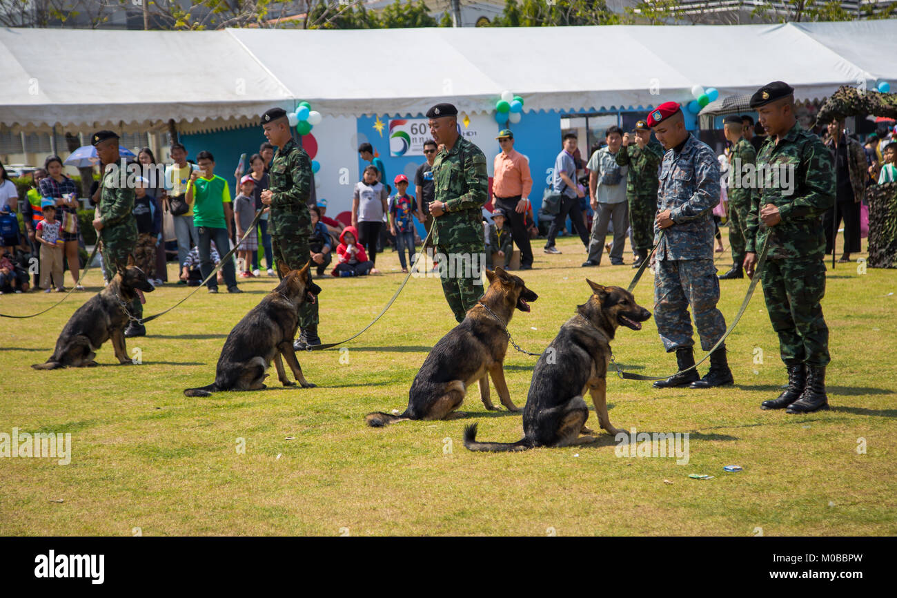 Bangkok, Thailand - January 13, 2018: German Shepherd obedience training in Thai Army base open to public in Children's - Stock Image
