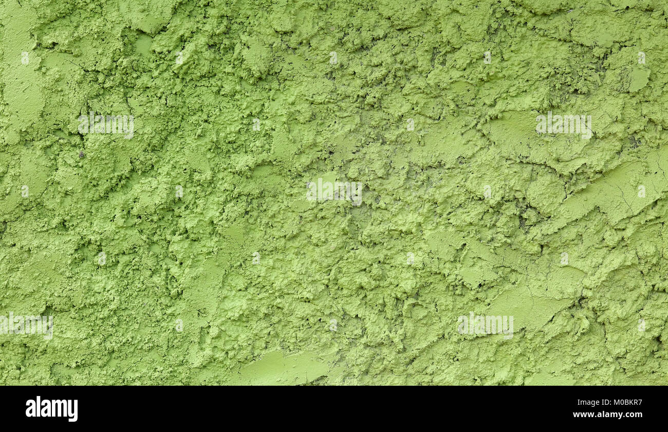 Seamless Stucco Green Wall Texture