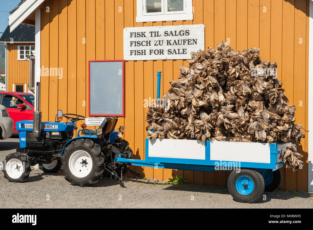 Dried cod fish heads waiting to be exported from Lofoten in northern Norway to Italy and served as fish head soup - Stock Image
