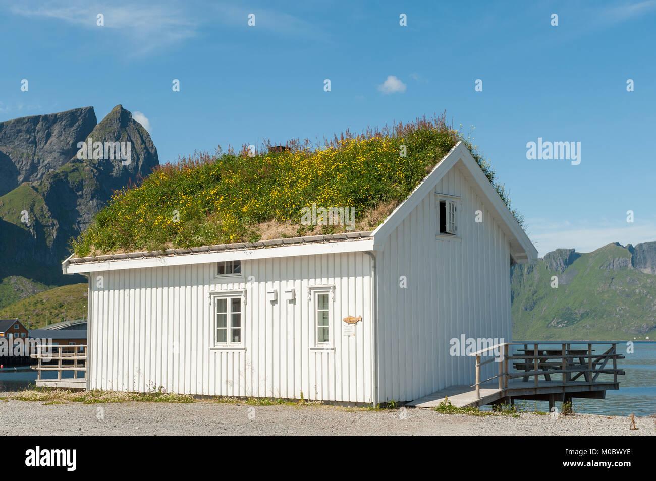 Traditional rural building in coast landscape on Lofoten islands in northern Norway. Lofoten is a popular tourist - Stock Image
