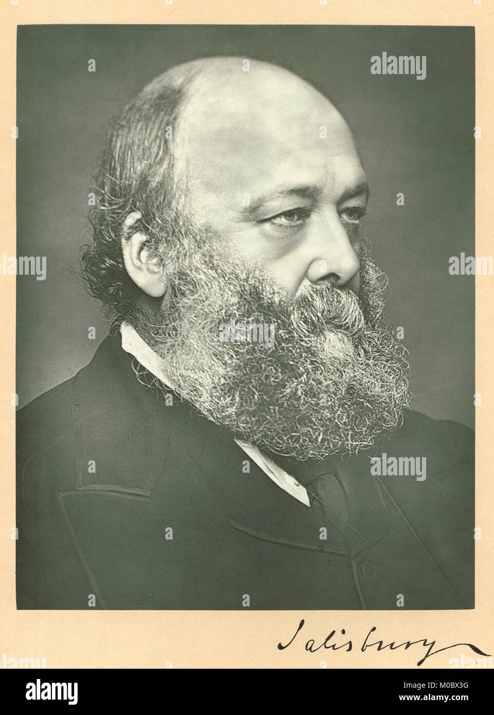 Robert Gascoyne-Cecil, 1830-1903.  The Marquess of Salisbury, three times Prime minister of the UK - Stock Image