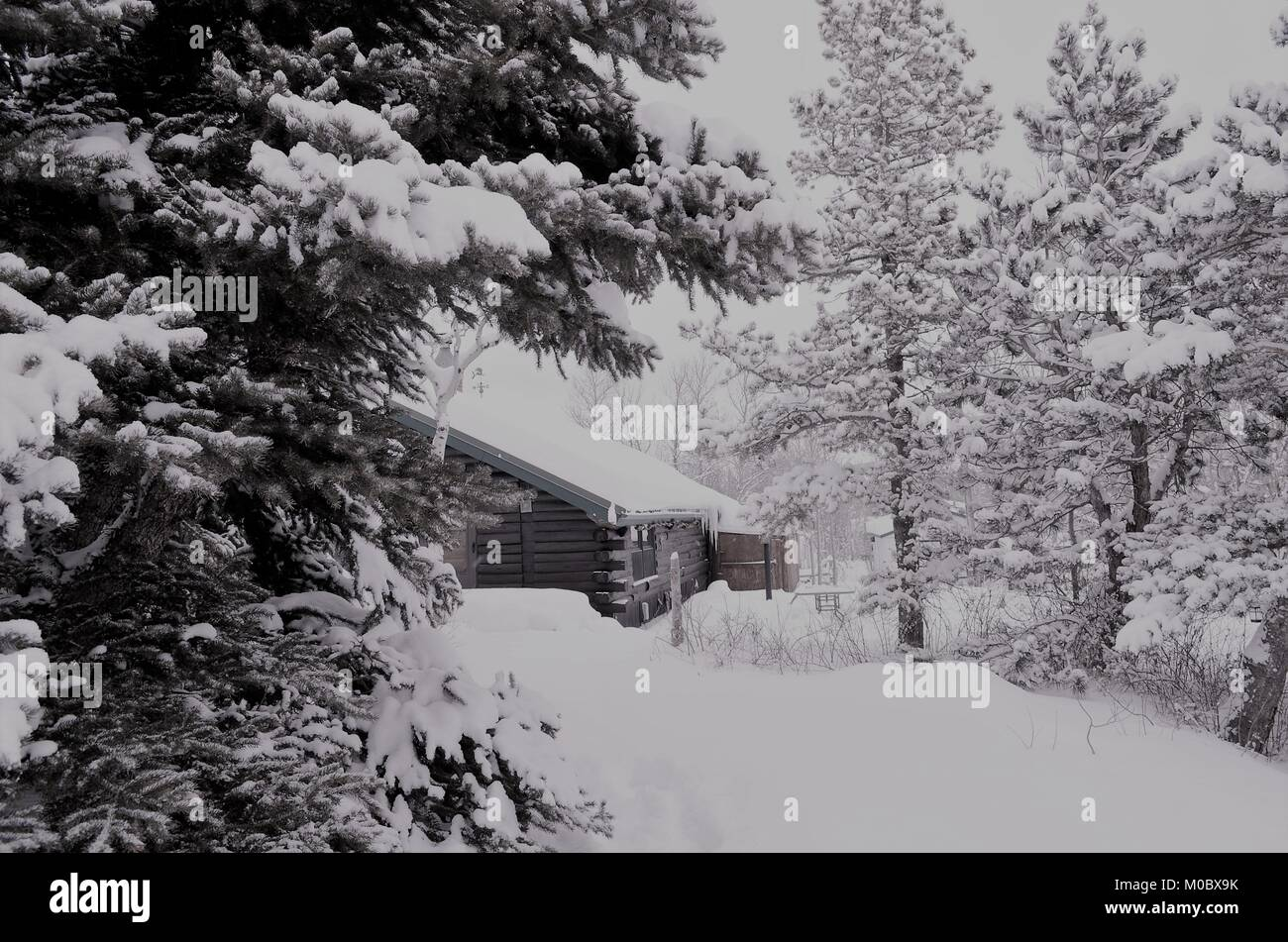 A  log cabin in the mountains at Christmas time, after a heavy snow fall occurred, covering everything with a thick - Stock Image