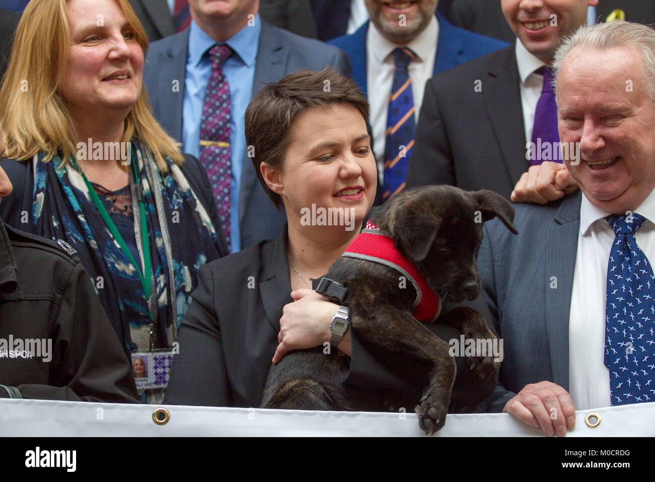 Ruth Davidson MSP with puppy in Scottish Parliament  Pic Peter Devlin - Stock Image