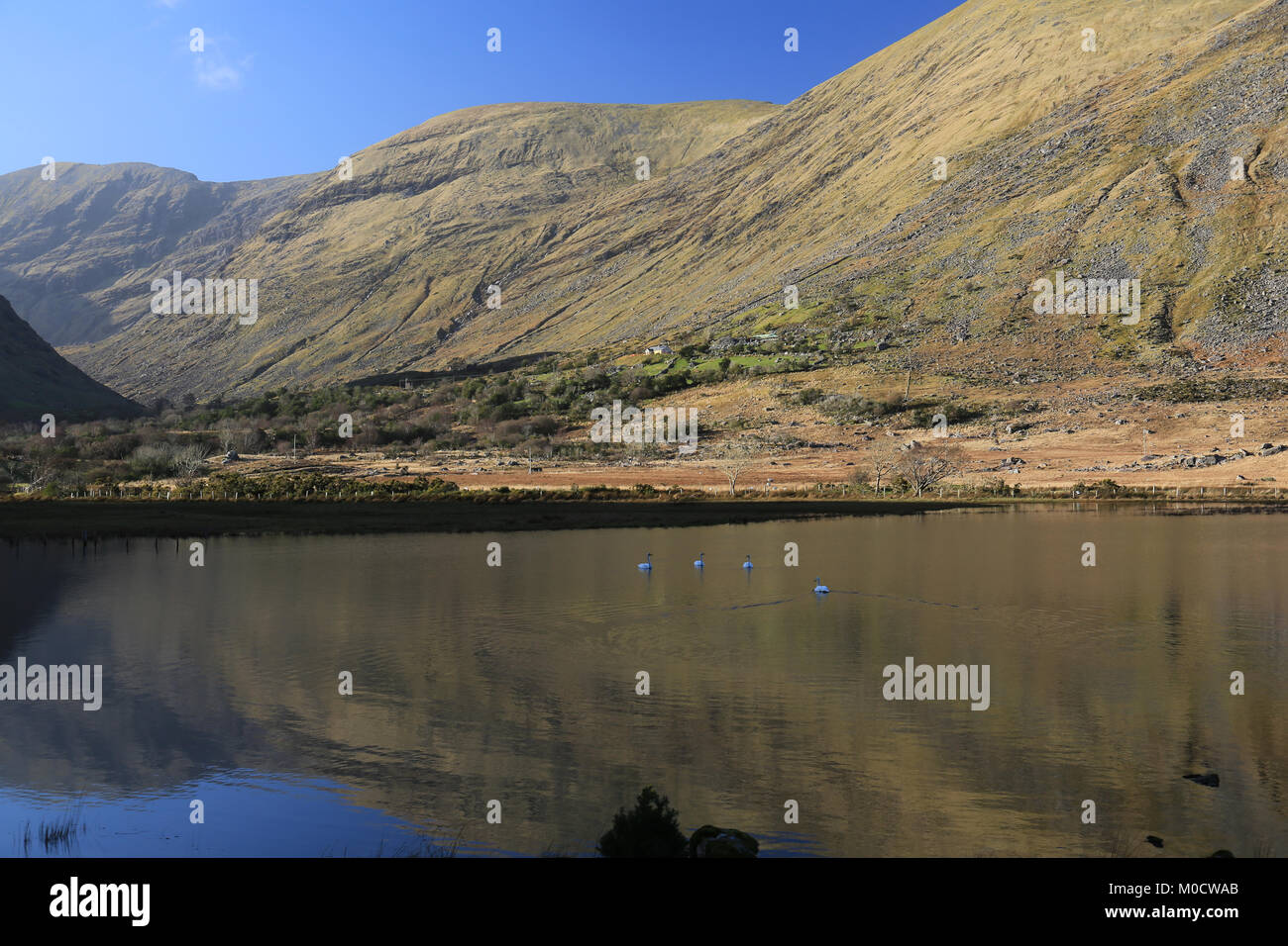 lake views in  county kerry, Ireland - Stock Image
