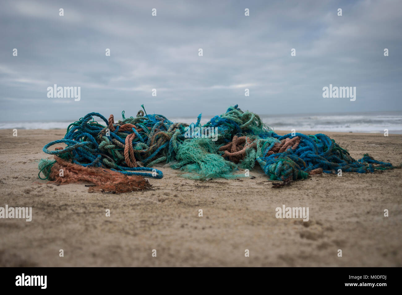 A tangle of synthetic plastic fishing ropes washed up on the beach. Environmental damage. - Stock Image