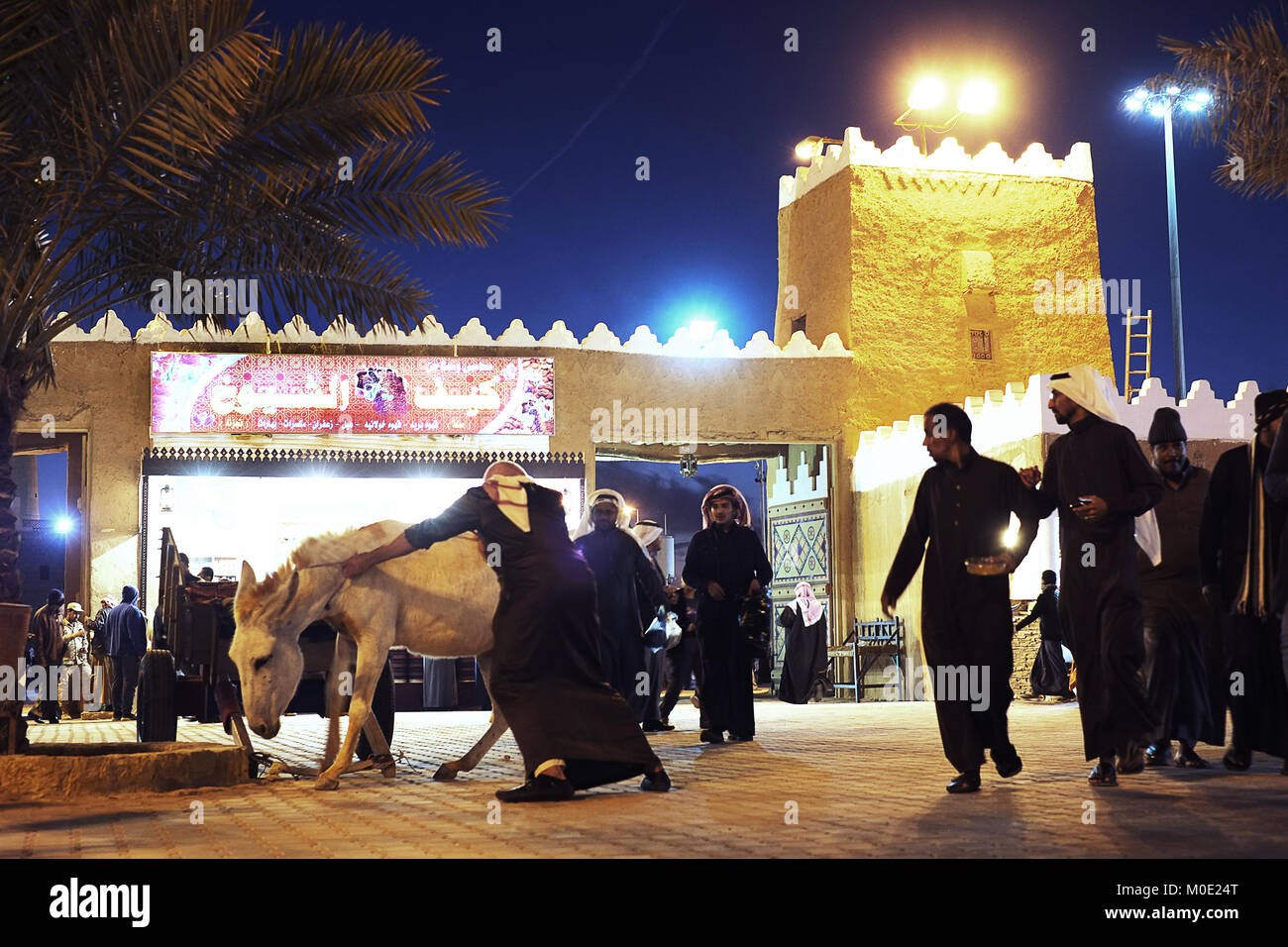 A man pushes a donkey fowrard while crowd watches him at  the Al Janadriyadh Festival ground in KSA - Stock Image