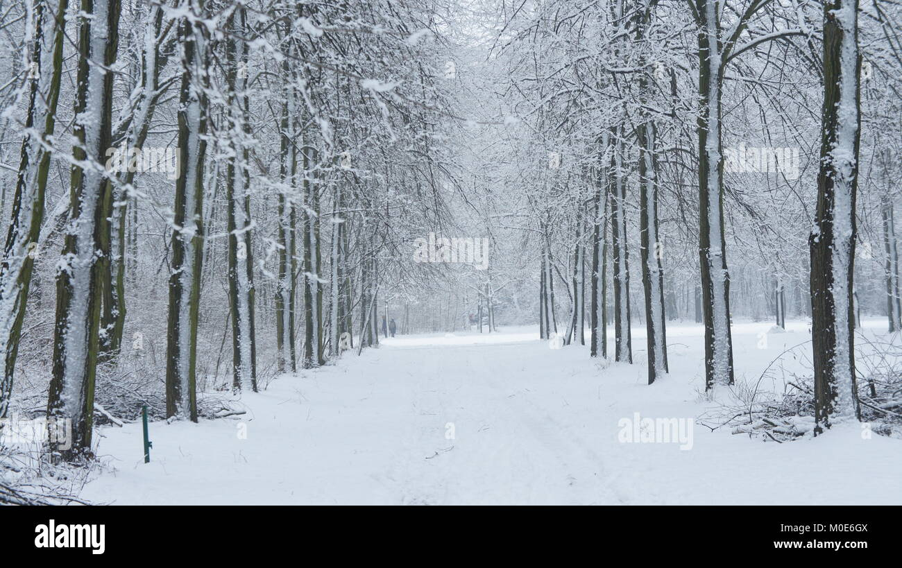 True Frost Stock Photos & True Frost Stock Images - Alamy