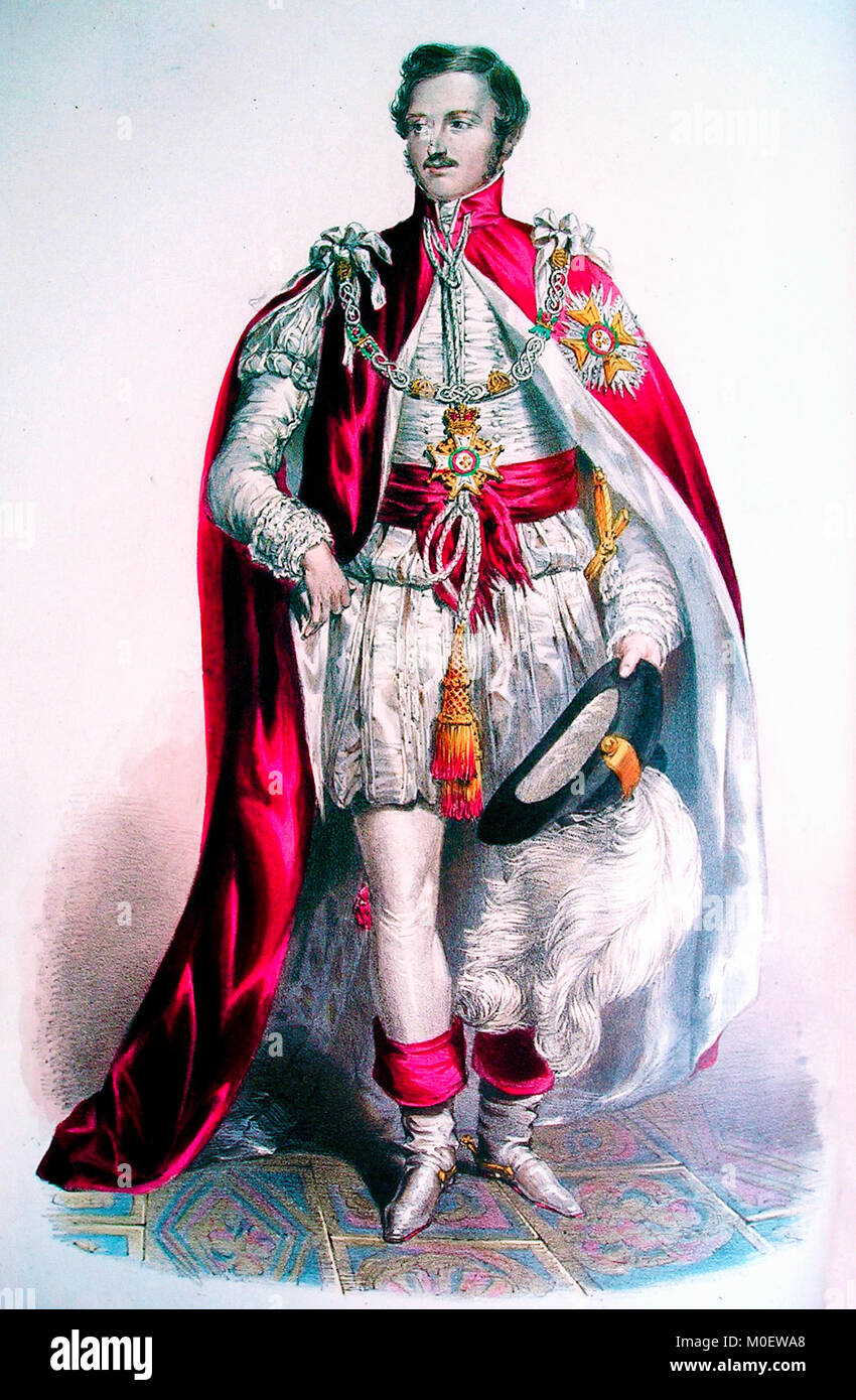 Knight Grand Cross of the Order of the Bath - Prince Albert, the Prince Consort, wearing the robes of a Knight Grand - Stock Image