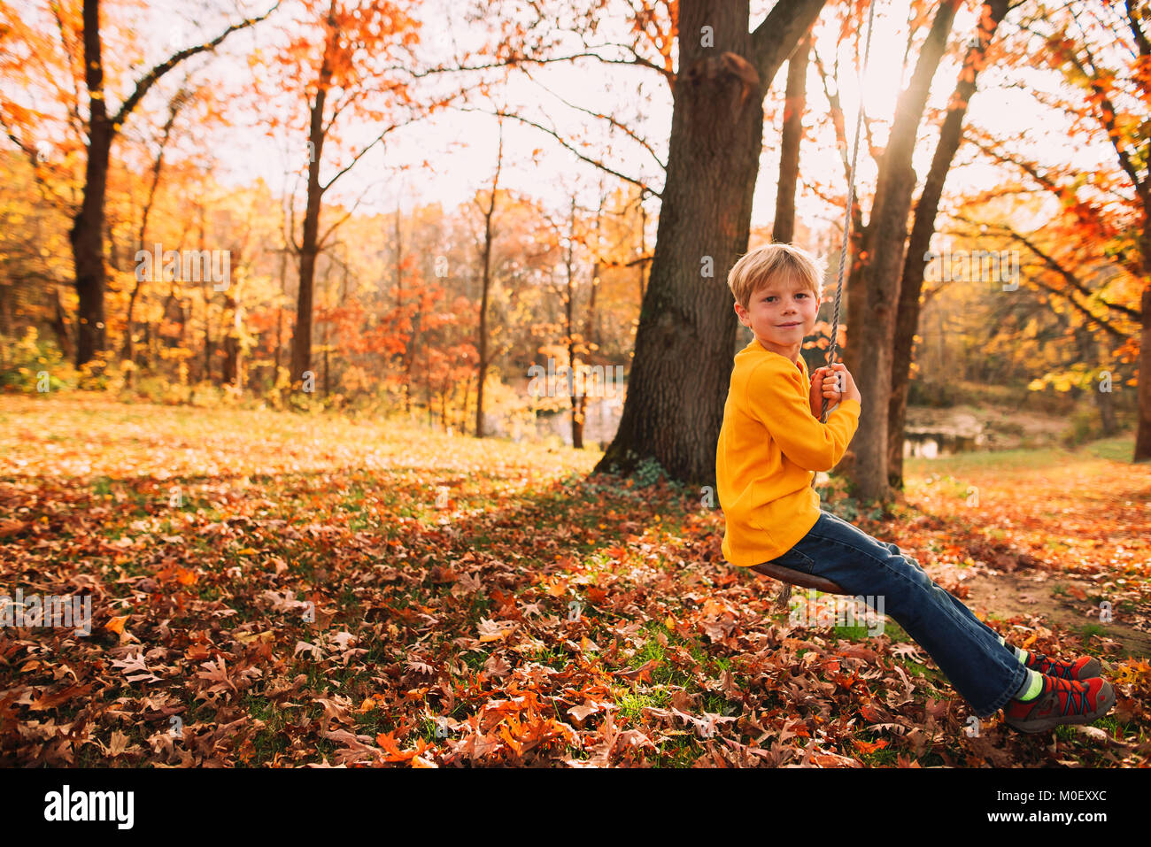 Boy sitting on a rope swing in a garden - Stock Image