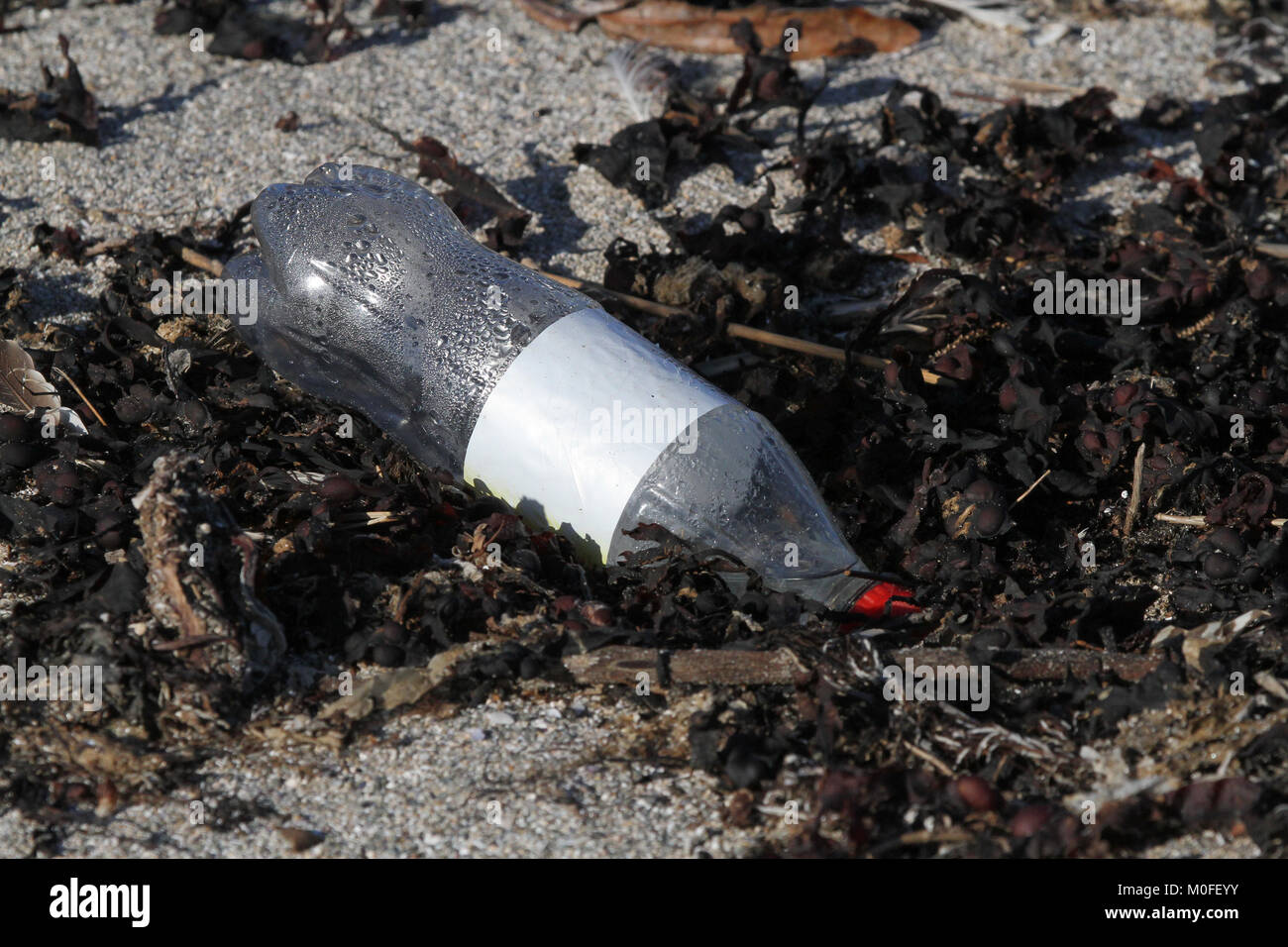 Plastic soft drink bottle on beach. - Stock Image