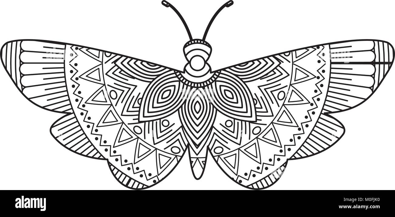 Moth Coloring Pages - Worksheet & Coloring Pages