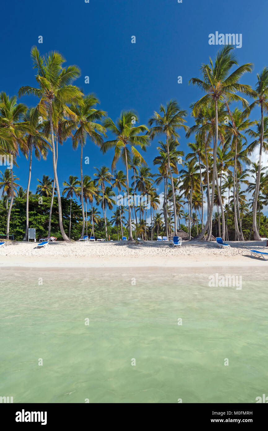Caribbeab beach in the Dominican Republic - Stock Image