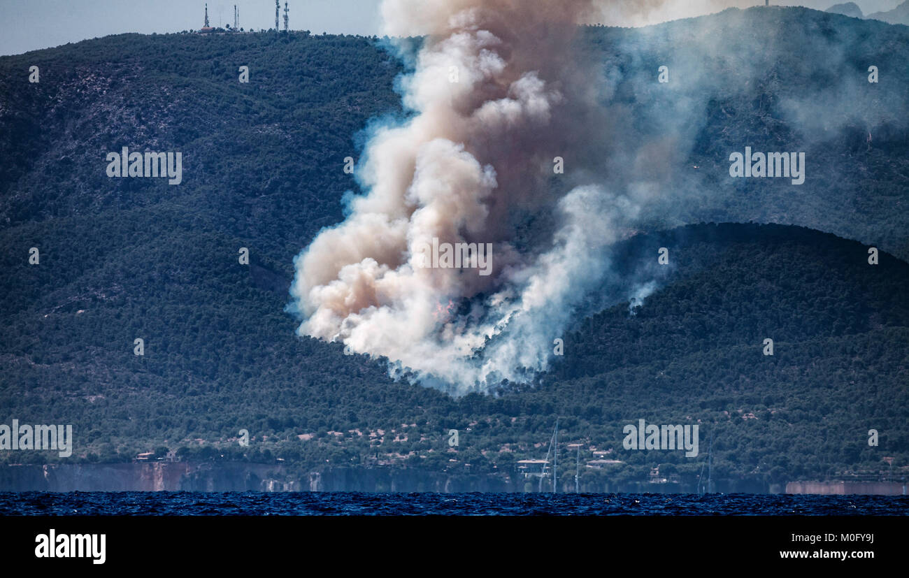 Forest Fire , Mallorca , Spain - Stock Image