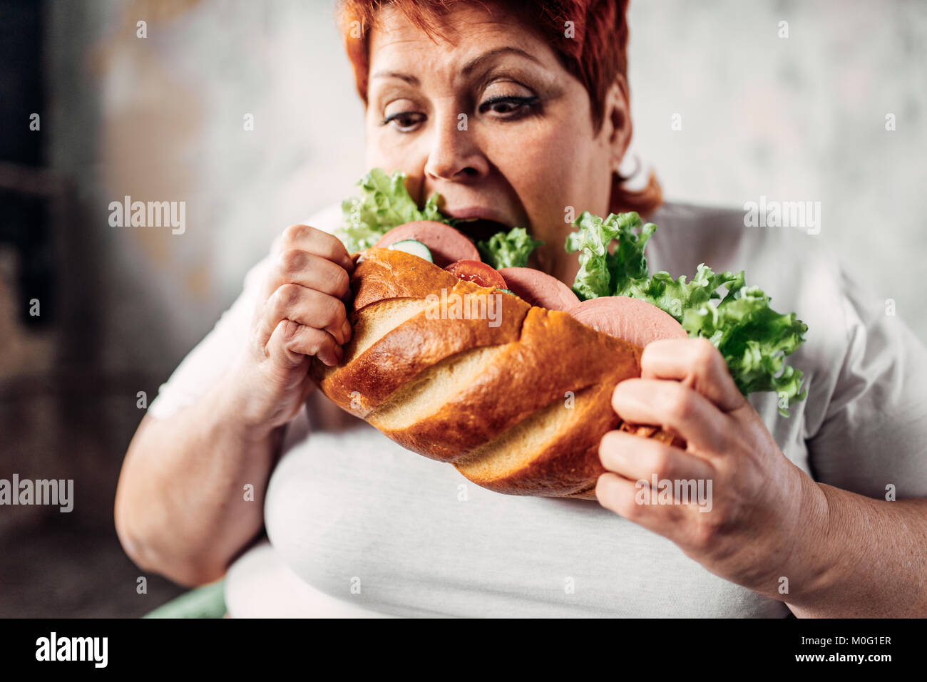 Fat woman eats sandwich, overweight and bulimic. Unhealthy lifestyle, obesity - Stock Image