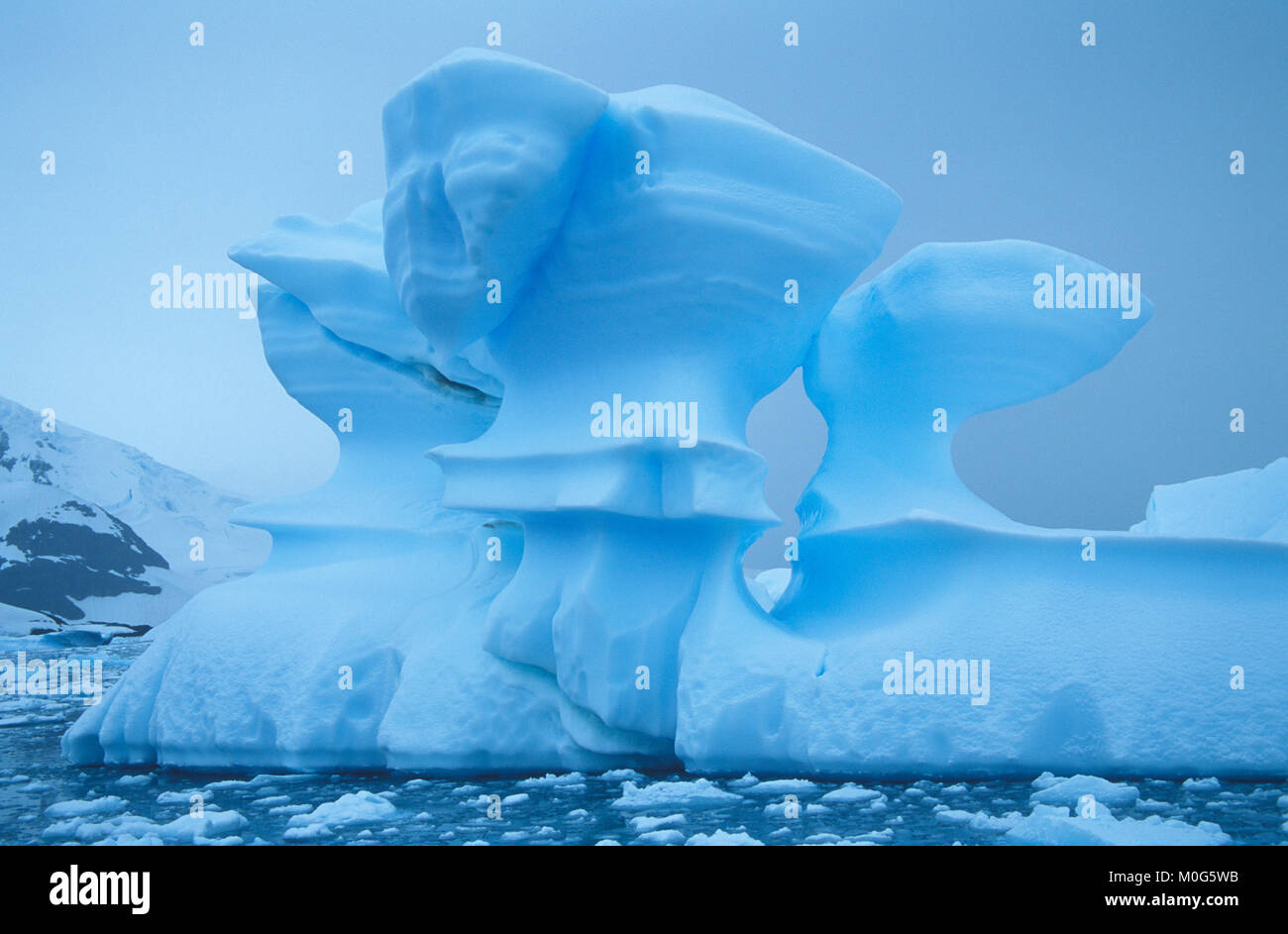 Iceberg in Paradise Bay. Behind Lemaire and Bryde Islands in Antarctic Peninsula - Stock Image