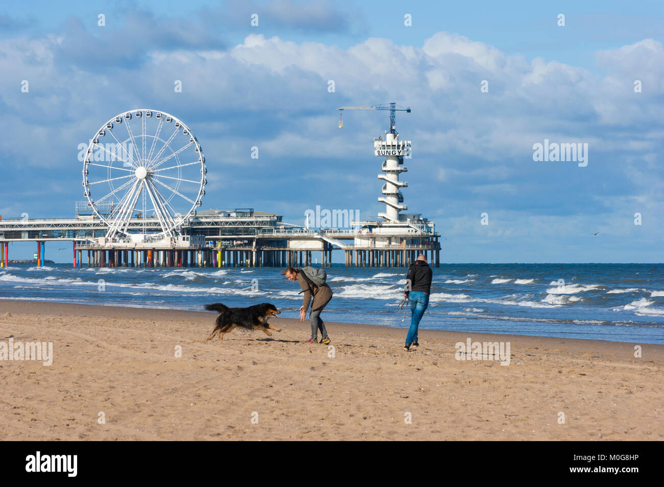 Young couple playing with dog on the beach near Scheveningen Pier, at the North Sea beach resort of Scheveningen, - Stock Image