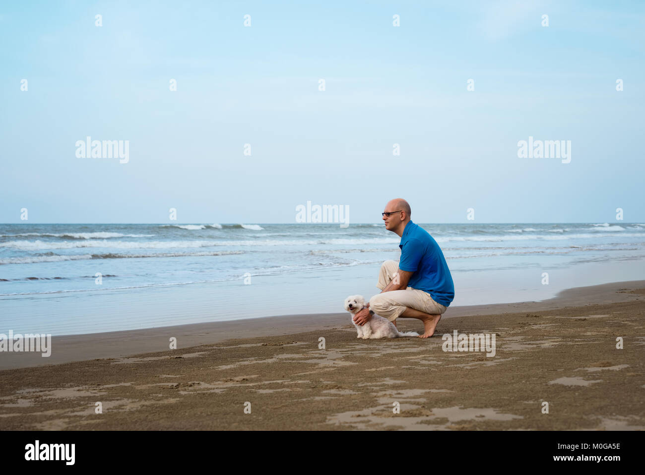 Owner with Maltese dog looking far at the beach - Stock Image