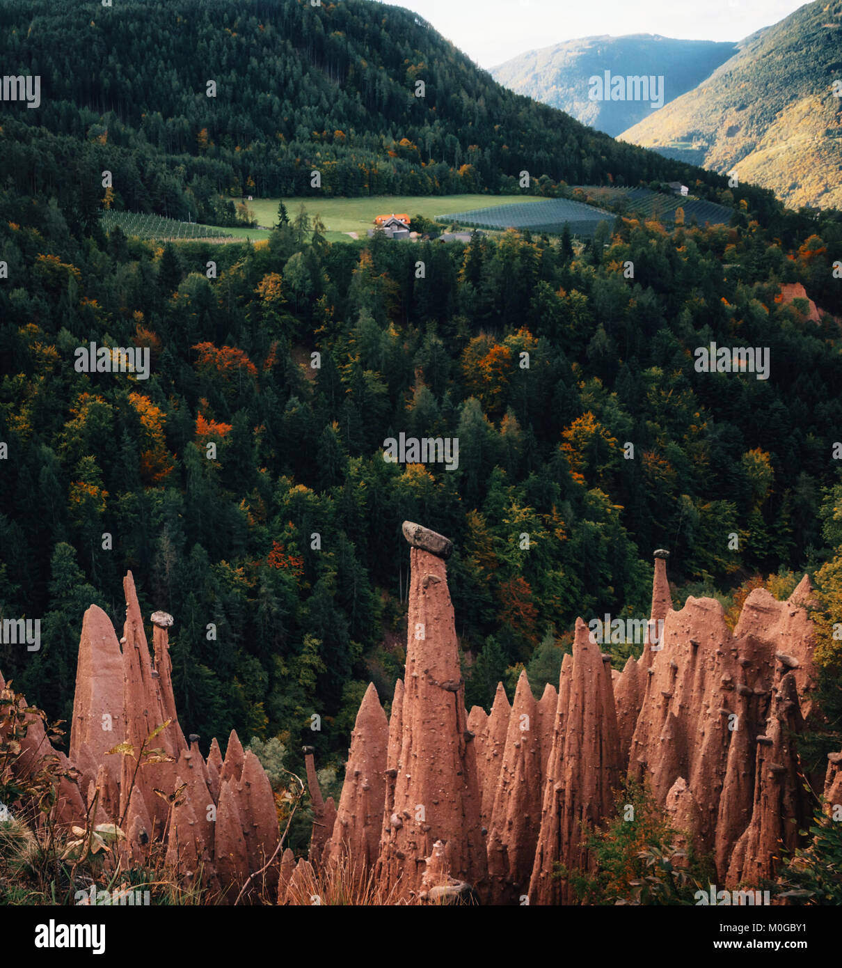 Earth pyramids with stones on top in Renon Ritten region, South Tyrol, Italy. - Stock Image