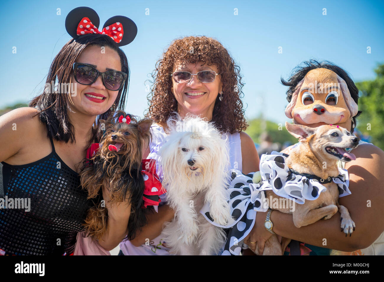 RIO DE JANEIRO - FEBRUARY 19, 2017: A group of dog owners pose with their pets dressed up for Carnival at the Blocão - Stock Image