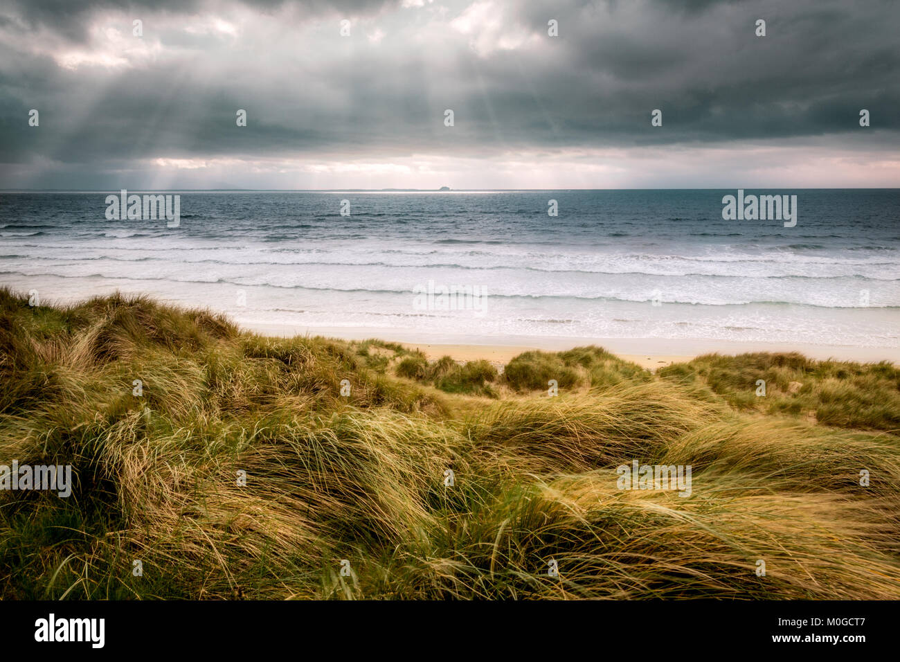 Windy weather on top of a sand dune looking out to a choppy coast on a sandy beach - Stock Image