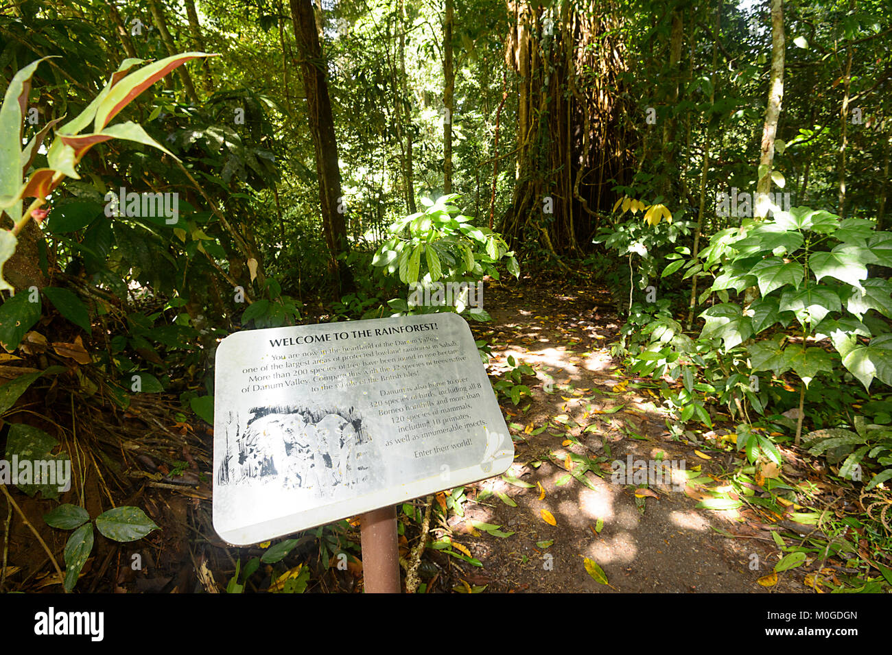 Welcome to the rainforest sign, Danum Valley Conservation Area, Borneo, Sabah, Malaysia - Stock Image