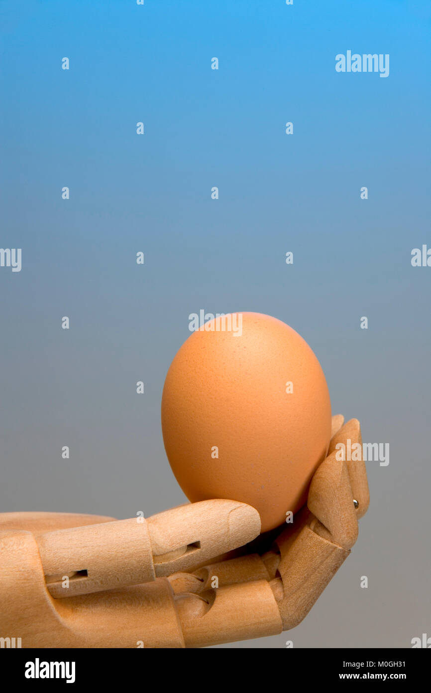 Artists mannequin hand offering a single egg, graduated blue background - Stock Image