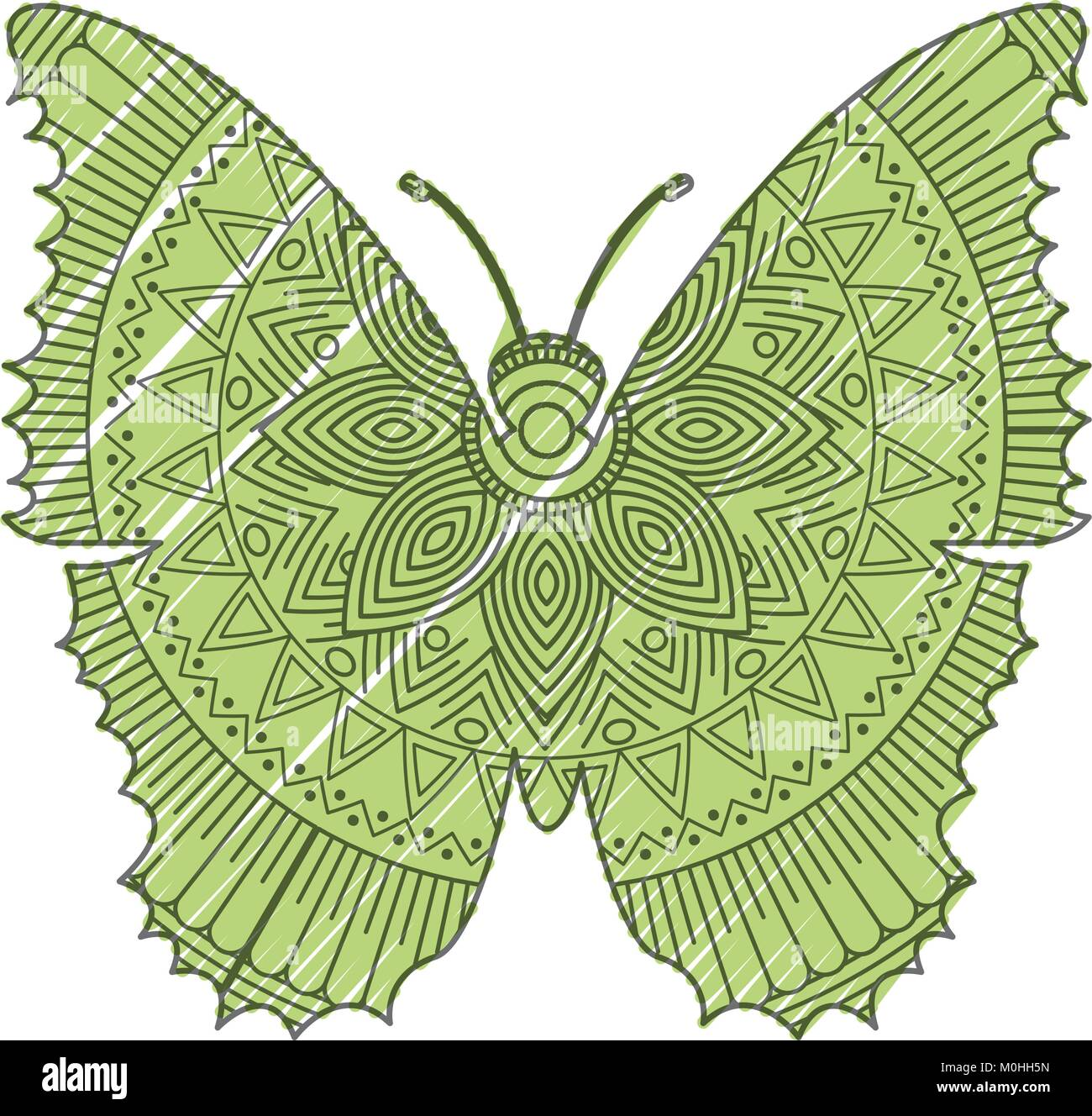 hand drawn for adult coloring pages with butterfly zentangle Stock ...