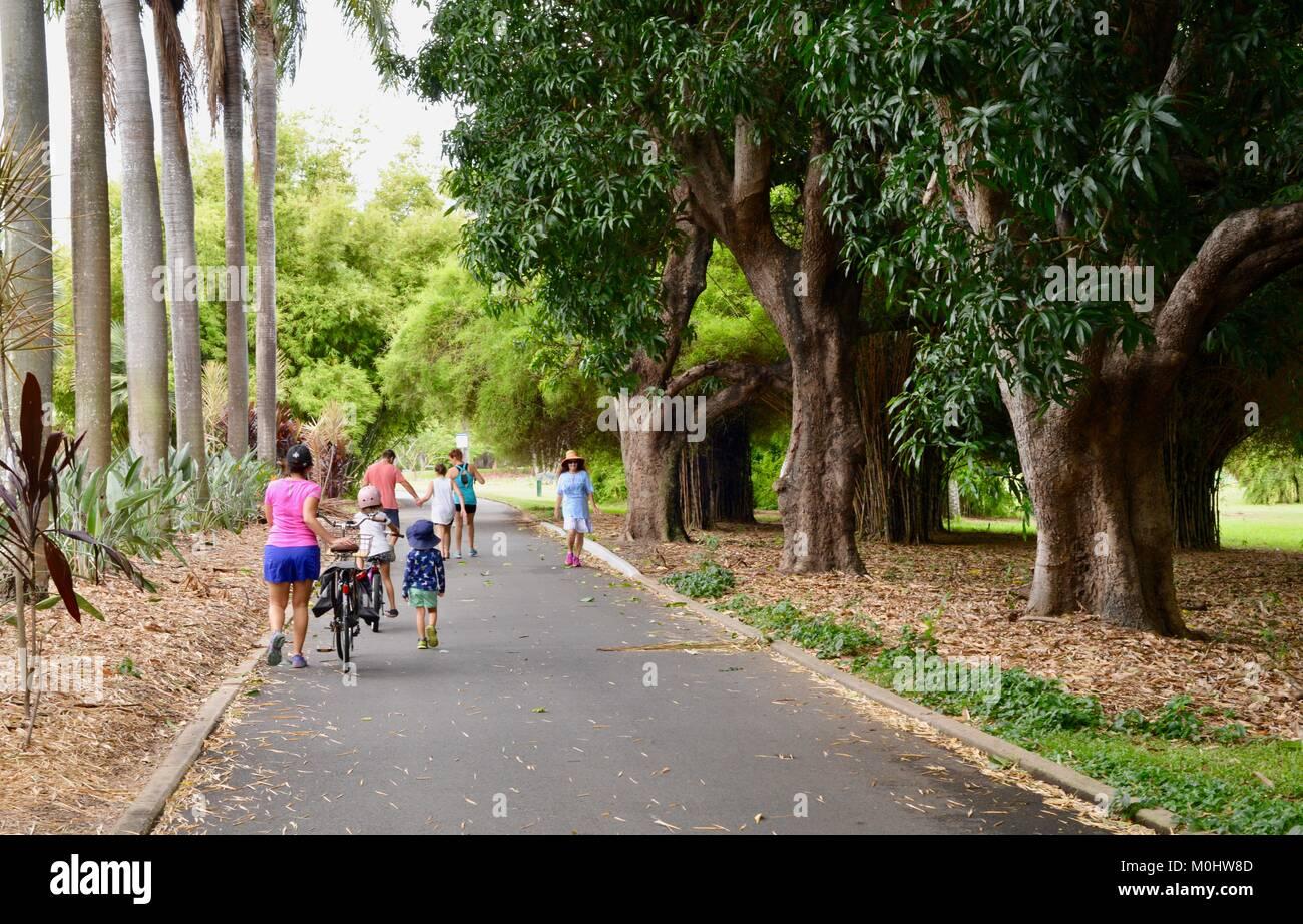 Pedestrians walk on a road through Anderson Park Botanic Gardens, Townsville, Queensland, Australia Stock Photo